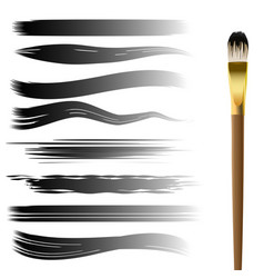 hand drawn brush strokes set vector image