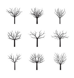 set black winter trees without leafs vector image