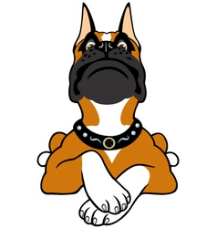Cartoon boxer vector