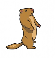Prairie dog vector