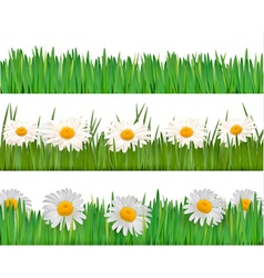 fresh spring banner vector image vector image