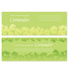 Herbs background coriander set 1 vector