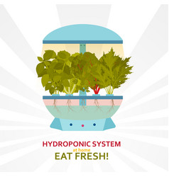 Hydroponic system for indoor gardening vector