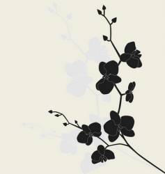 Stylized orchid branch vector