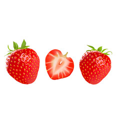 Strawberry isolated on white background vector