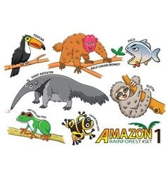 Set of cute cartoon animals and birds in the amazo vector