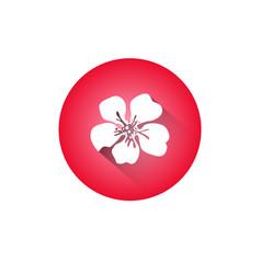 Cherry blossom icon japanese sakura flower vector