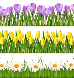 fresh floral banner vector image vector image