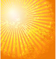 Hot summer sun vector