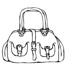 modern fashion bag or purse female accessory vector image