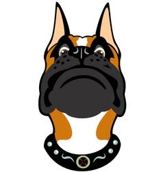 cartoon boxer head vector image