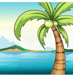 Coconut tree and ocean vector image vector image