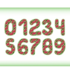 Pink watermelon numbers 1234567890 in vector image vector image