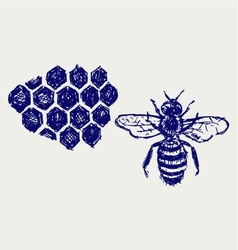 Working bee on honeycells vector image vector image