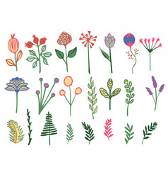 Hand drawn colorful vintage floral elements vector