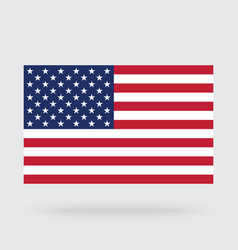 usa flag isolated on background vector image