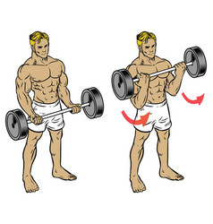 Male fitness workout doing barbell durl to train vector