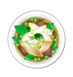 Thai Green Curry with Fish Balls and Eggplant vector image