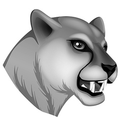 A grey panther vector image vector image