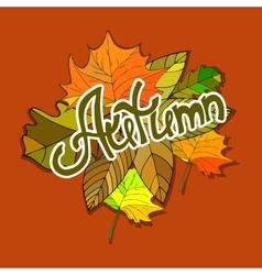 Colorful autumn background Hand drawn doodles vector image vector image