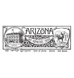 The state banner of arizona the apache state vector