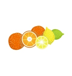 Citrus product rich in folic acid vector