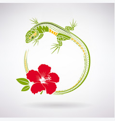 Green lizard and red hibiscus vector