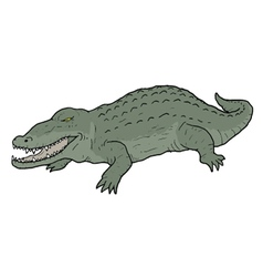 Crocodile draw vector