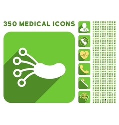 Infection microbe icon and medical longshadow icon vector