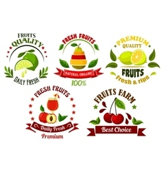 Organic food emblems with fresh fruits and juice vector image