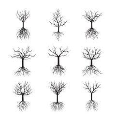 set trees without leafs vector image