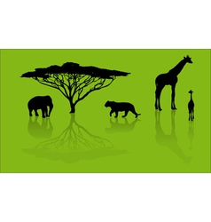 Zoo silhouettes vector