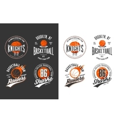 Balls for game of basketball in dark and light vector