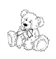 drawing teddy bear with bow vector image