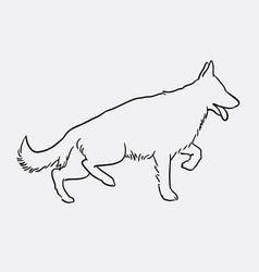 german shepherd pet dog doodle style vector image vector image
