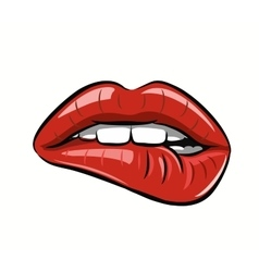 womans red lips vector image vector image