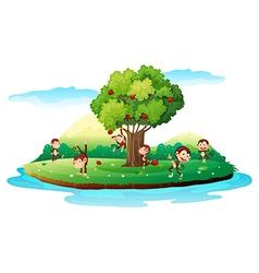 An island with playful monkeys vector image