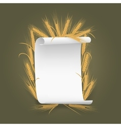 Banner label template paper sheet with wheat vector