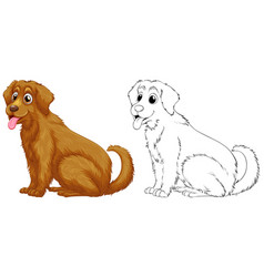 animal outline for golden retriever dog vector image vector image