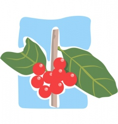 berry vector image vector image