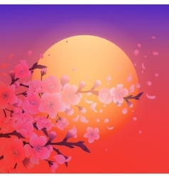 Sakura and setting sun vector