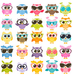 Set of colorful owls with glasses isolated on vector