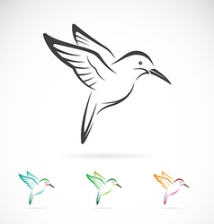 image of an hummingbird design vector image