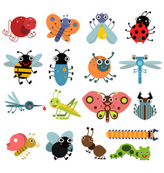 insects and bugs vector image vector image