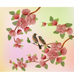 Sakura bird postcard menu vector image