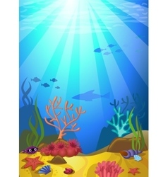 Seabed with corals vector image