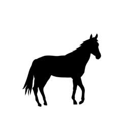 silhouette Cartoon horse vector image