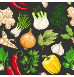 vegetable pattern with herbs on dark vector image