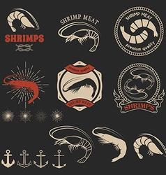 Set of shrimps meat labels vector image
