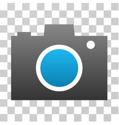 photo camera gradient icon vector image